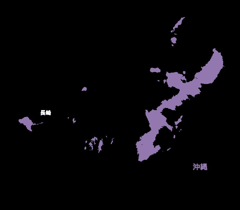 沖縄の実績